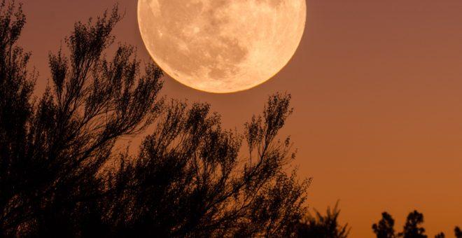 måne-medium